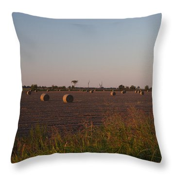 Bales In Peanut Field 1 Throw Pillow by Douglas Barnett