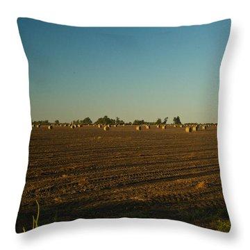 Bales In Peanut Field 9 Throw Pillow by Douglas Barnett