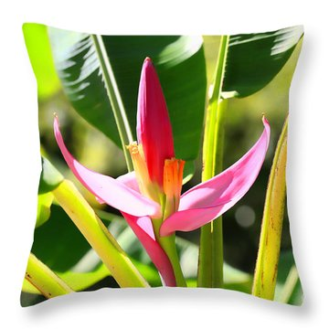 Banana Bloom Throw Pillow by Cheryl Young
