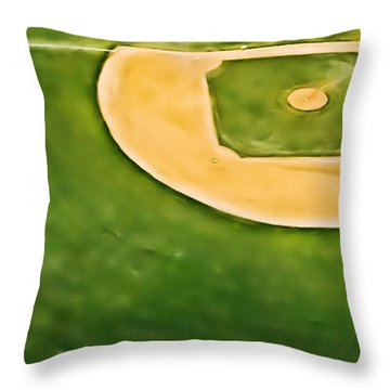 Baseball Throw Pillow by Patrick M Lynch