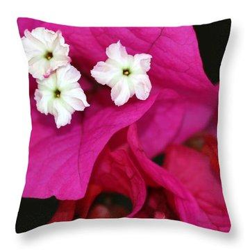 Beautiful Bouganvillea Throw Pillow by Sabrina L Ryan