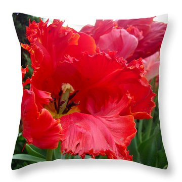 Beautiful From Inside And Out - Parrot Tulips In Philadelphia Throw Pillow by Mother Nature