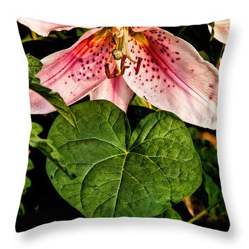 Beauty Throw Pillow by Christopher Holmes