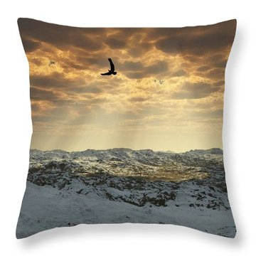 Beauty Of Winter Throw Pillow by Julie Grace