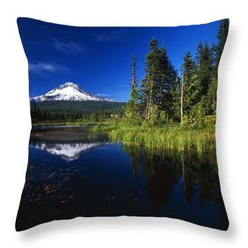 Beaver Dam In Pond, Reflection Of Mount Throw Pillow by Natural Selection Craig Tuttle