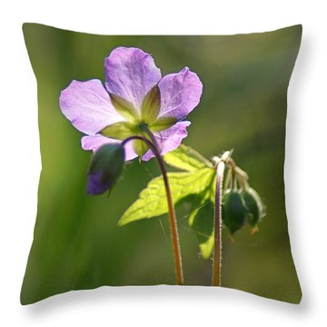 Behind The Scenes Throw Pillow by Bill Pevlor