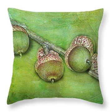 Big Oaks From Little Acorns Grow Throw Pillow by Judi Bagwell
