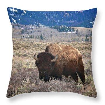 Big Old Boy Throw Pillow by Eric Tressler