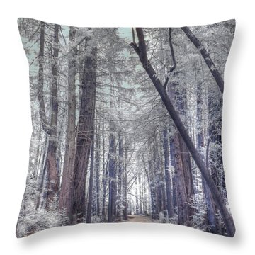 Big Sur State Park Throw Pillow by Jane Linders