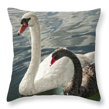 Black And White In Color Throw Pillow by Barbara Middleton