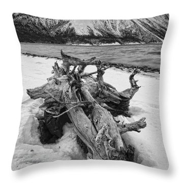 Black And White Version Of Kathleen Throw Pillow by Robert Postma
