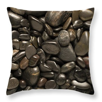 Black River Stones Landscape Throw Pillow by Steve Gadomski