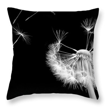 Blown Away Throw Pillow by Rhonda Barrett