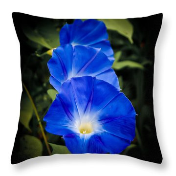 Blue Beauty Throw Pillow by Swift Family