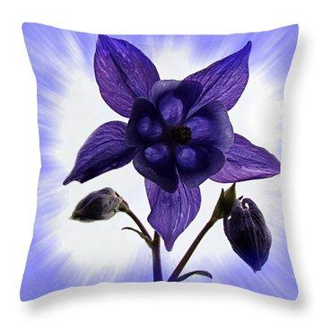 Blue Columbine Throw Pillow by Nick Kloepping