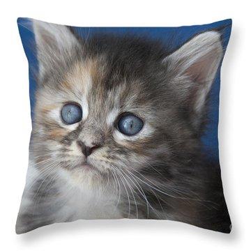 Blue  Throw Pillow by Elaine Hillson