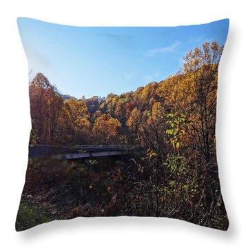 Blue Ridge 14 Throw Pillow by Steven Lebron Langston