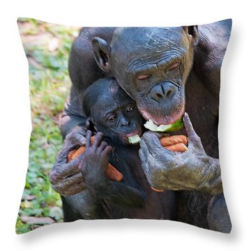Bonobo 3 Throw Pillow by Kenneth Albin