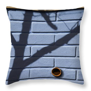 Boo Throw Pillow by Paul Wear