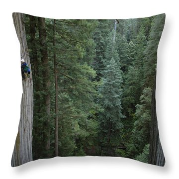 Botanists Take A Core Sample Throw Pillow by Michael Nichols