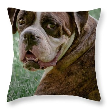 Boxer Smiles Throw Pillow by DigiArt Diaries by Vicky B Fuller