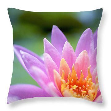 Bright Pink Water Lily II Throw Pillow by Kicka Witte