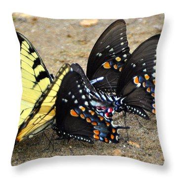 Butterflies By The Buches Throw Pillow by Marty Koch