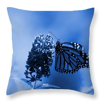 Butterfly In Blue Throw Pillow by Angie Tirado