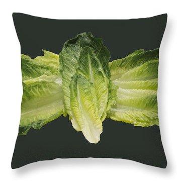 Butterfly Lettuce Throw Pillow by LeeAnn McLaneGoetz McLaneGoetzStudioLLCcom