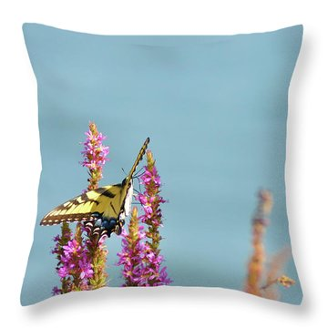 Butterfly Morning Throw Pillow by Bill Cannon