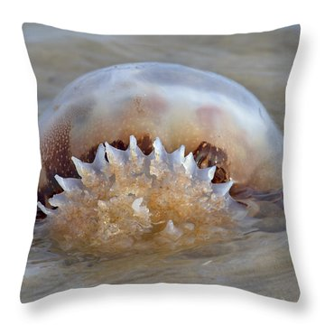 Cabbage Head Jellyfish  Throw Pillow by Betsy Knapp
