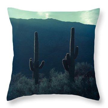 Cactus Polaroid Throw Pillow by Scott Sawyer