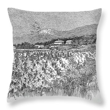 California: Vineyard, 1889 Throw Pillow by Granger