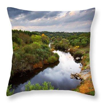 Calm River Throw Pillow by Carlos Caetano