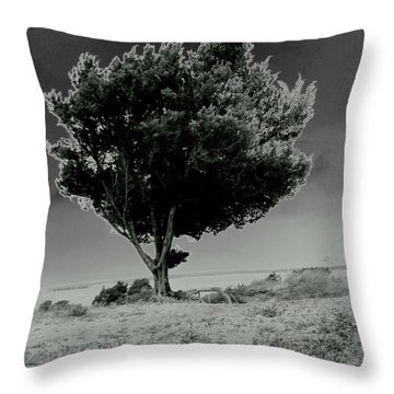 Calms Throw Pillow by Amy Sorrell