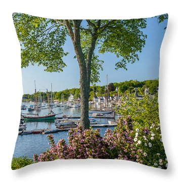 Camden Spring Throw Pillow by Susan Cole Kelly