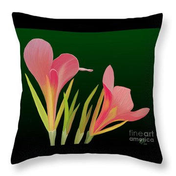 Canna Lilly Whimsy Throw Pillow by Rand Herron
