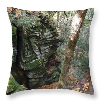 Cantwell Cliffs Throw Pillow by Gerald Strine