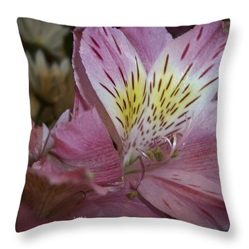 Carlee Mae Throw Pillow by Trish Tritz