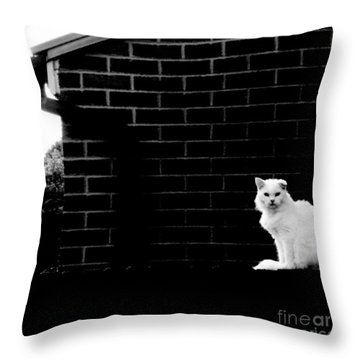 Cat With A Floppy Ear Throw Pillow by Isabella Abbie Shores