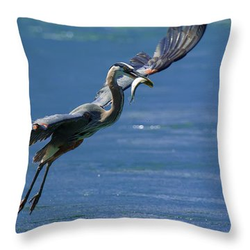 Catch Of The Day Throw Pillow by Sebastian Musial