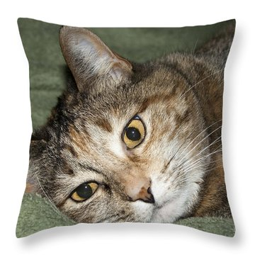 Cats Eyes Throw Pillow by Michael Waters