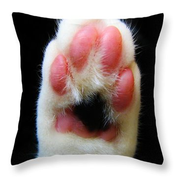 Cat's Honor Throw Pillow by Michelle Milano