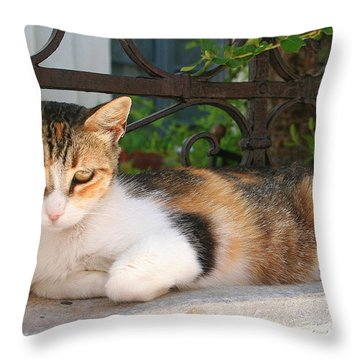 Cats Rule Even In Santorini Throw Pillow by Laurel Talabere