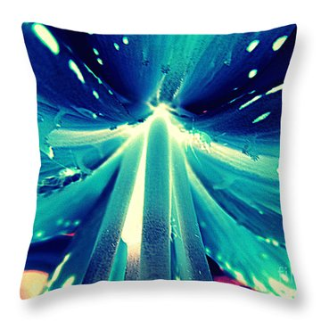 Celestial Radiance Throw Pillow by Renee Trenholm