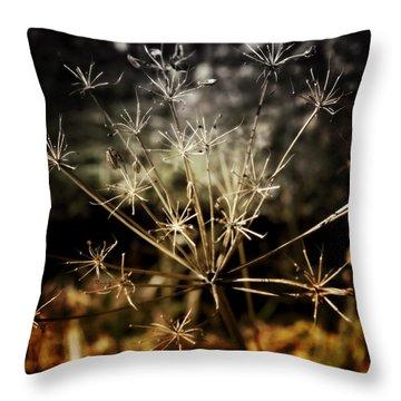 Changes Throw Pillow by Ellen Heaverlo