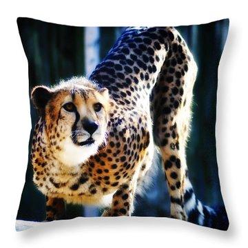 Cheeta Throw Pillow by Bill Cannon