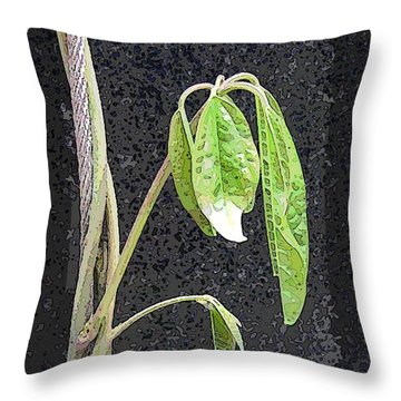 Climbing Throw Pillow by Tim Allen