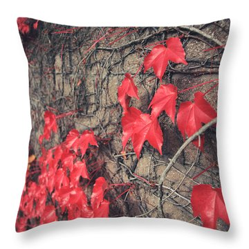 Clinging Throw Pillow by Laurie Search