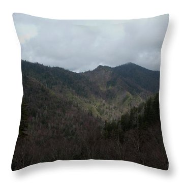 Cloudy Mountain Throw Pillow by Michael Waters